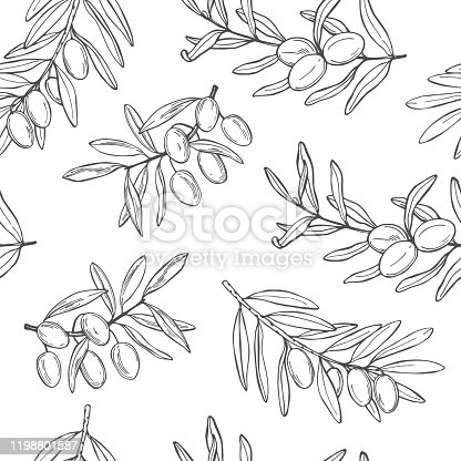 Hand drawn olive. Branches with fruits.Vector  seamless pattern.