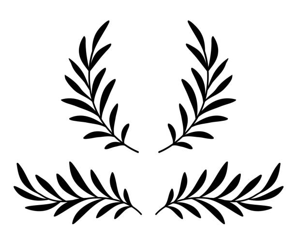 olive branches with leaves and wreath black hand drawn olive branches with leaves, wreath and laurel divider fruit silhouettes stock illustrations