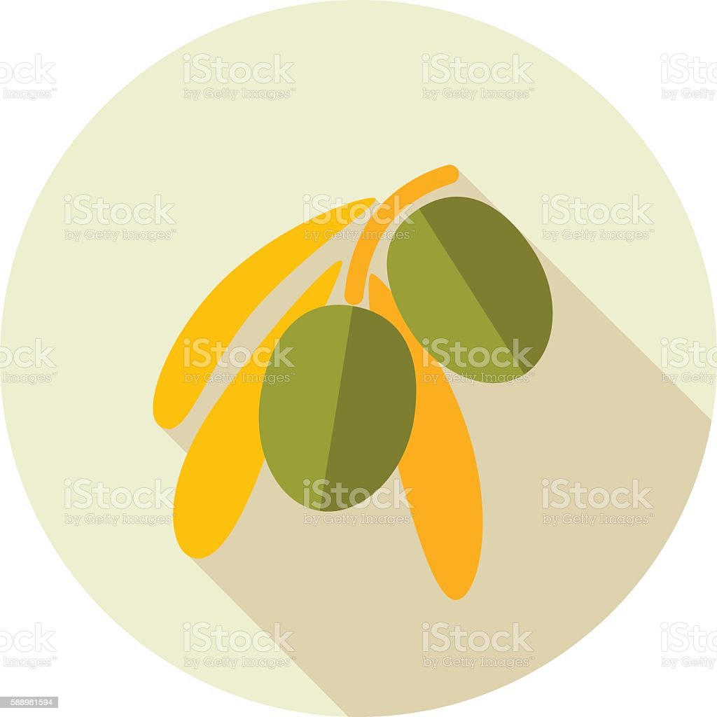 Olive flat icon. Tropical fruit