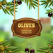 Premium quality olives background with natural product symbols cartoon vector illustration