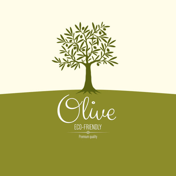 illustrations, cliparts, dessins animés et icônes de olive étiquette design - olivier