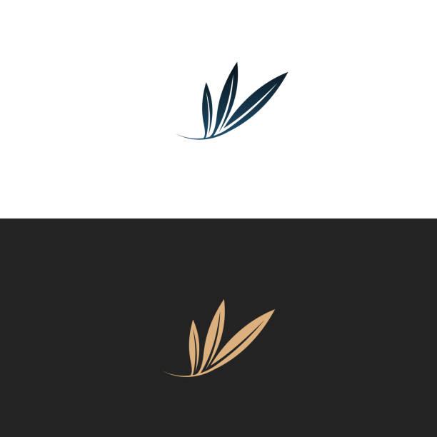 logo z oliwek, ilustracja, wektor - gałąź część rośliny stock illustrations