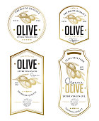 Vector hand drawn illustration of olive branches in engraving technique. Vintage templates for olive oil packaging.