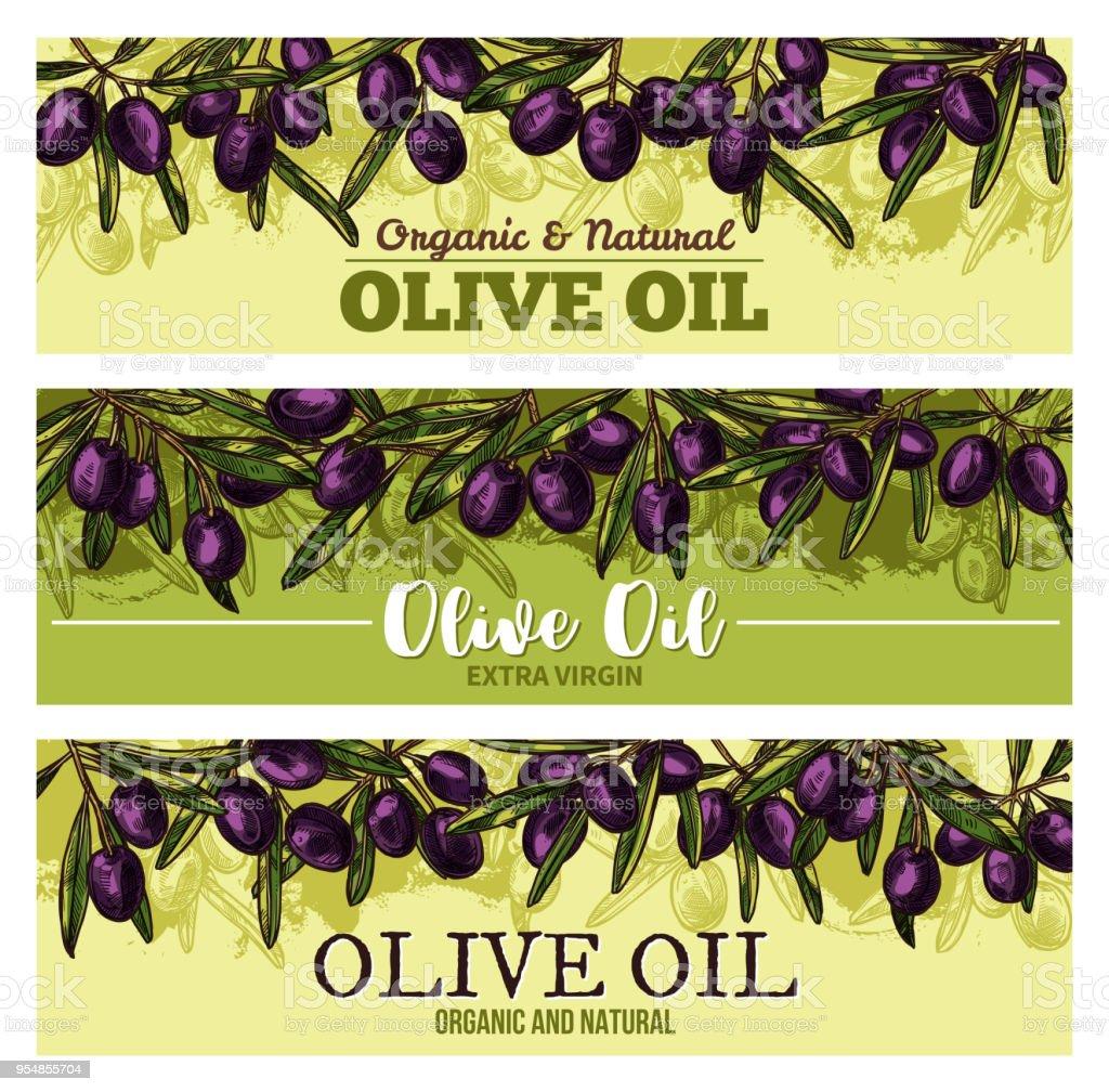 Olive oil banner with border of black fruit, leaf vector art illustration