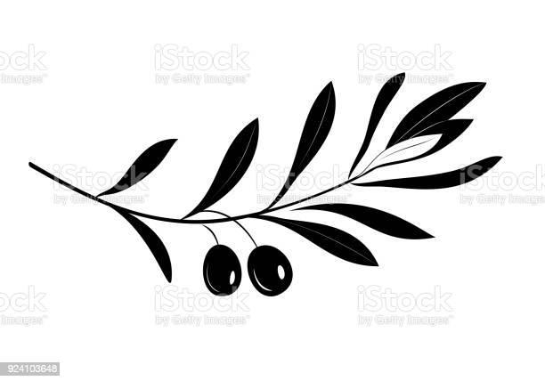 Olive oil label or logo for farm store or market vector id924103648?b=1&k=6&m=924103648&s=612x612&h=v4aiaddljz q9 xsj i6pnrwn4z69uzfil41sum86za=