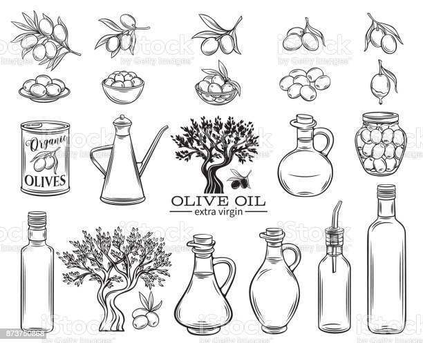Olive oil set vector id873750868?b=1&k=6&m=873750868&s=612x612&h=c kzmcchs txg2ua2nnzm8rxquhltfqxdzcfzshuubo=