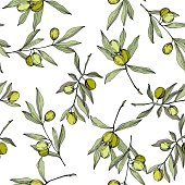Olive tree in a vector style isolated. Green engraved ink art. Seamless background pattern. Fabric wallpaper print texture. Vector olive tree for background, texture, wrapper pattern, frame or border.