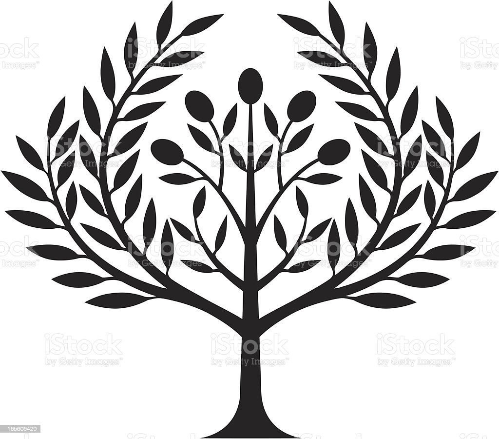 Olive tree royalty-free olive tree stock vector art & more images of agriculture