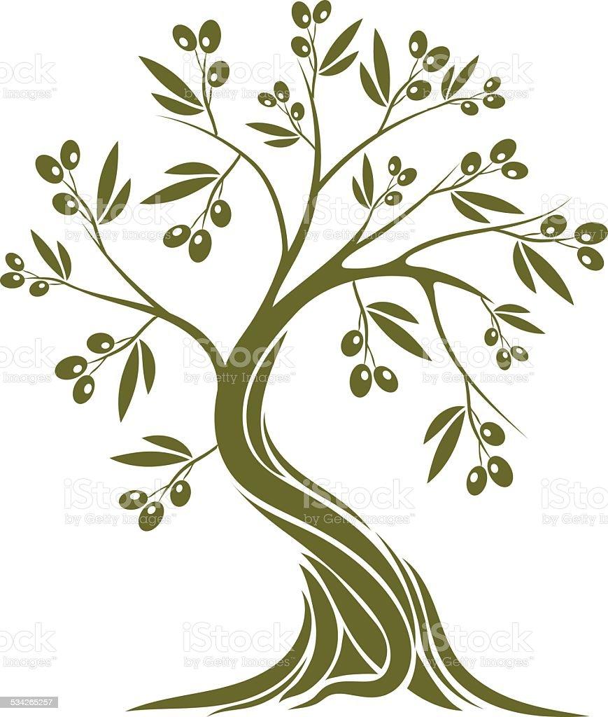 albero di ulivo immagini vettoriali stock e altre