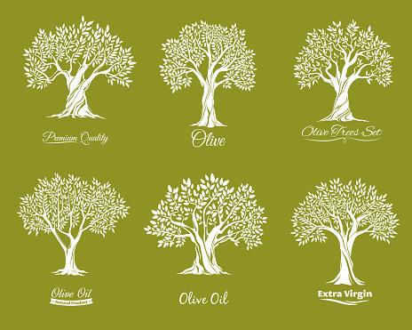 Olive trees farm vector icons set