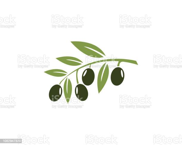 Olive vector icon illustration vector id1052947320?b=1&k=6&m=1052947320&s=612x612&h= 41cf8ru8p53rrtg16cyqkt3afu12rfxorir3zjkcpi=
