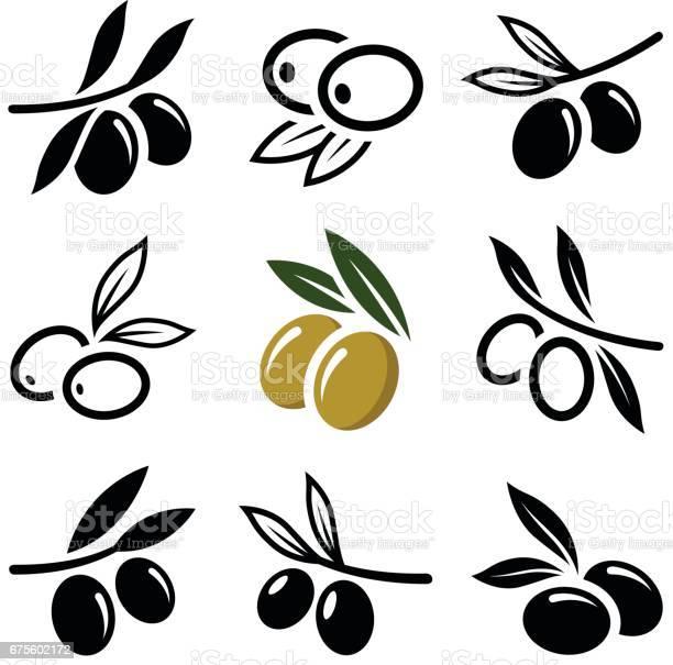 Olive vector id675602172?b=1&k=6&m=675602172&s=612x612&h=qocpn7b108fb yx1fv4sef pbjee3nwjkqn1wzcclmc=