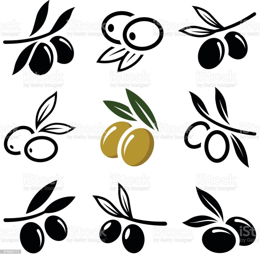 Olive - ilustração de arte vetorial