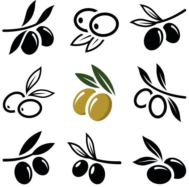 Olive Olive icon collection - vector outline and silhouette olives stock illustrations