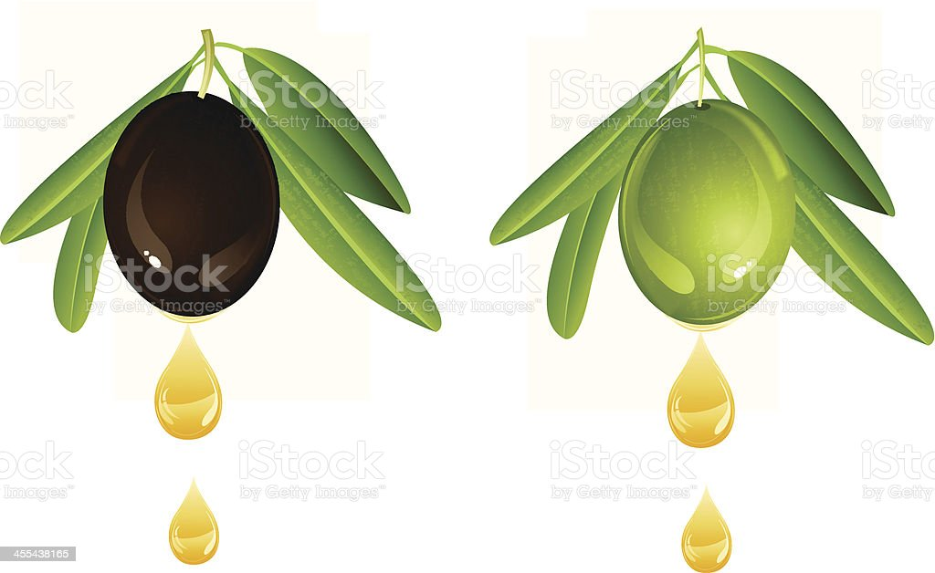 Olive With Oil vector art illustration