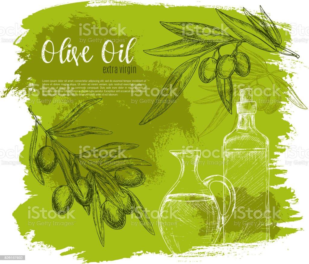 Olives and olive oil poster vector sketch - ilustração de arte vetorial