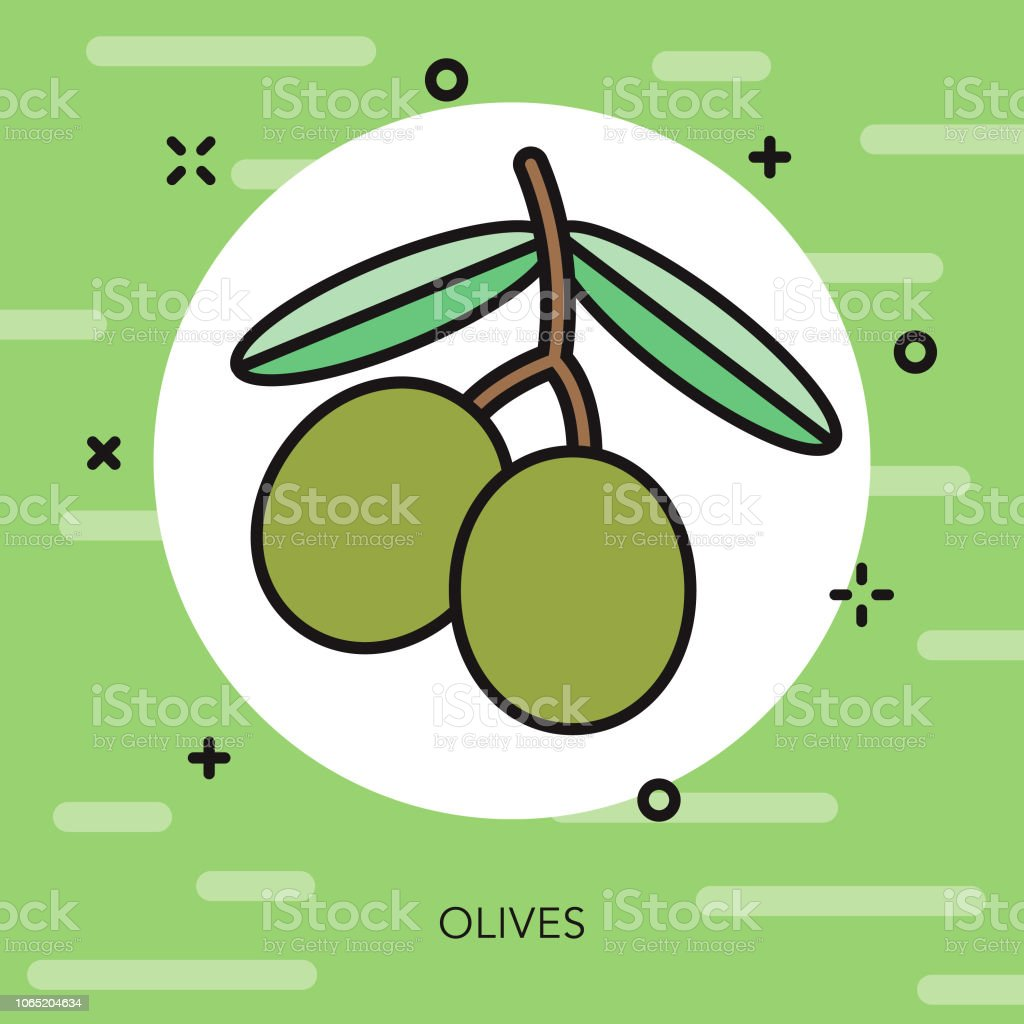 Olives Thin Line Italy Icon vector art illustration