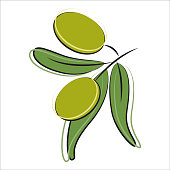 Olives in vector on a white background