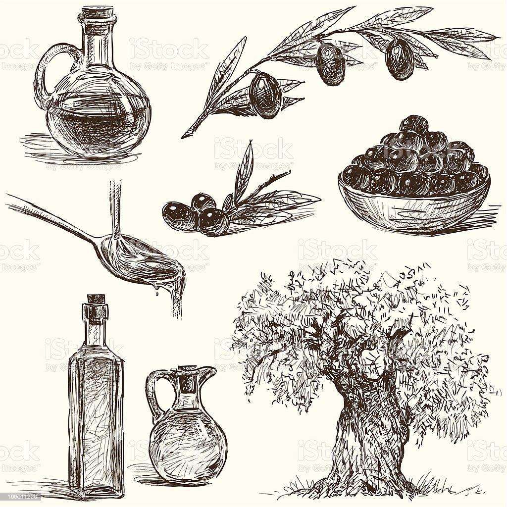 Azeitonas - ilustração de arte vetorial