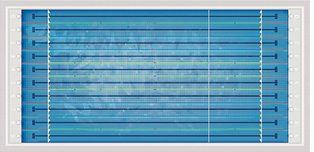 olympic swimming pool vector art illustration