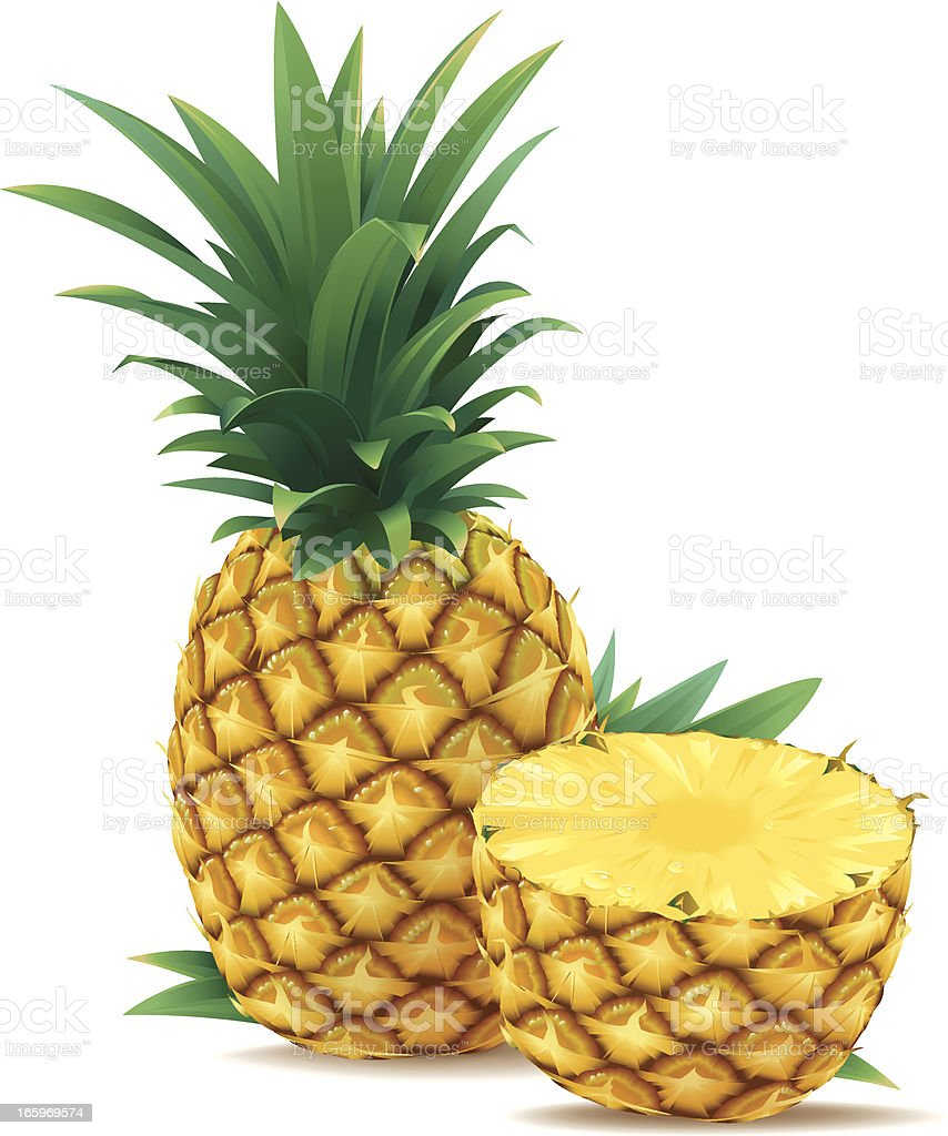 One and a Half Pineapple vector art illustration