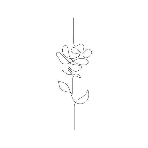 one line drawing. continuous line flower. hand-drawn illustration for logo, emblem and design card, poster. vector. - single object stock illustrations