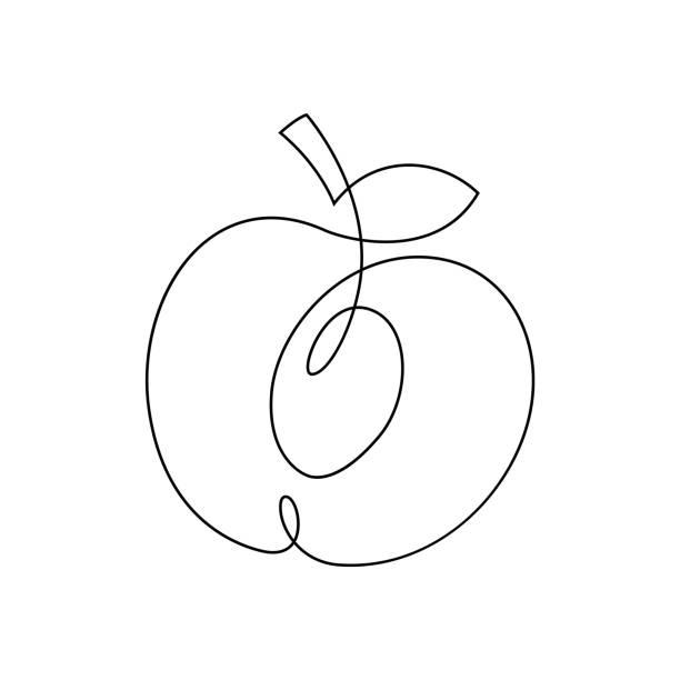 ein liniendesign pfirsich. handgezeichnete minimalismus stil-vektor-illustration. - einzelnes tier stock-grafiken, -clipart, -cartoons und -symbole
