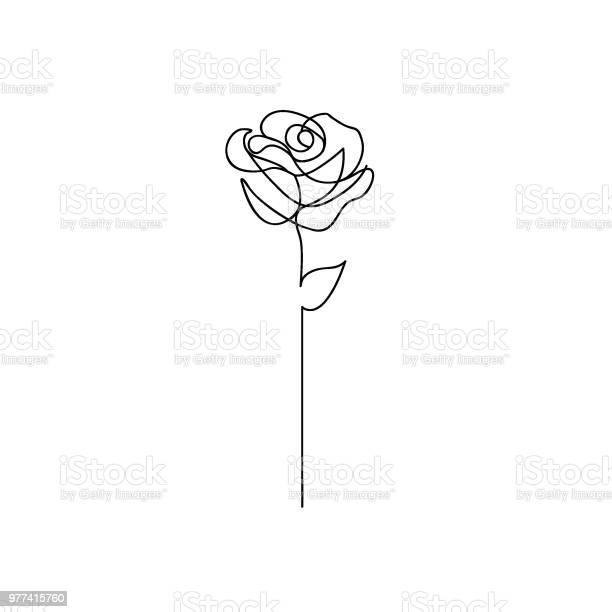 One line rose design hand drawn minimalism style vector id977415760?b=1&k=6&m=977415760&s=612x612&h=a qkc iqhxjfgx1yii6ibhhneflssplrncijdqkygaq=