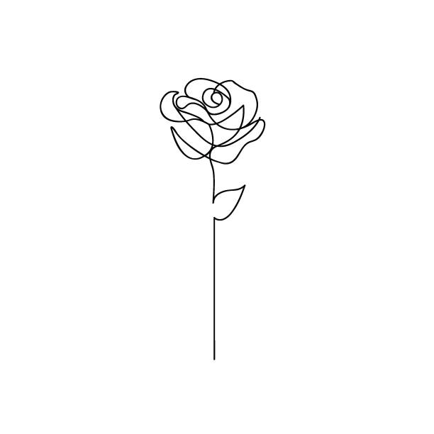 one line rose design. hand drawn minimalism style - lineart stock illustrations