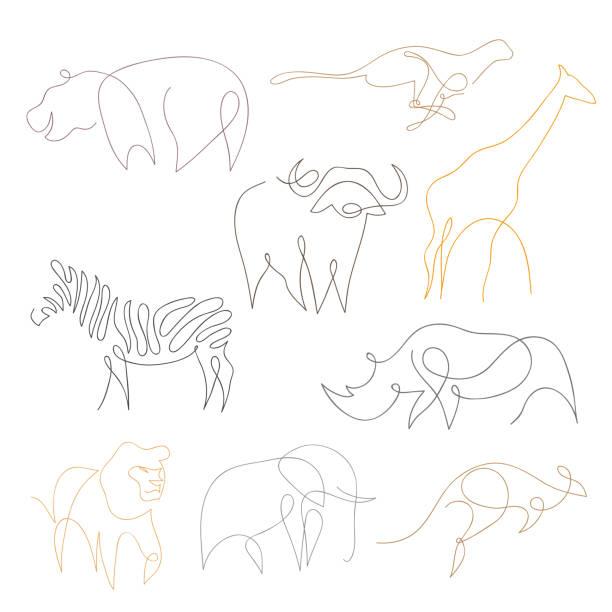 einfache linie safari-tiere-set. von hand gezeichnete vektor-illustration - elefantenkunst stock-grafiken, -clipart, -cartoons und -symbole