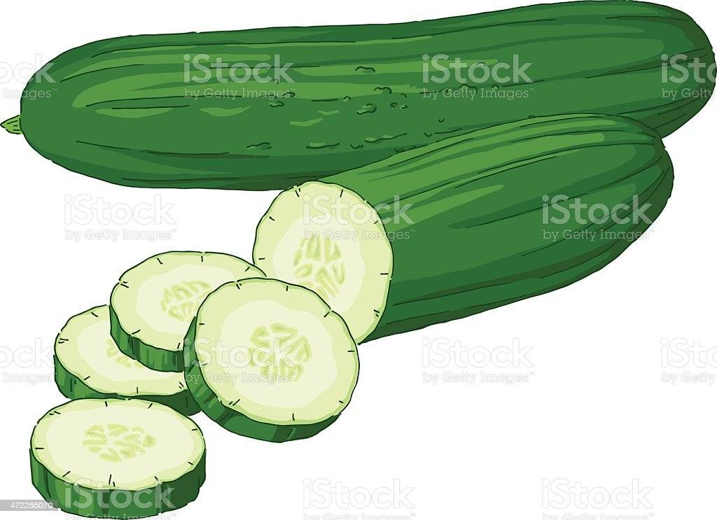 royalty free cucumber clip art vector images illustrations istock rh istockphoto com sea cucumber clipart cucumber slice clipart