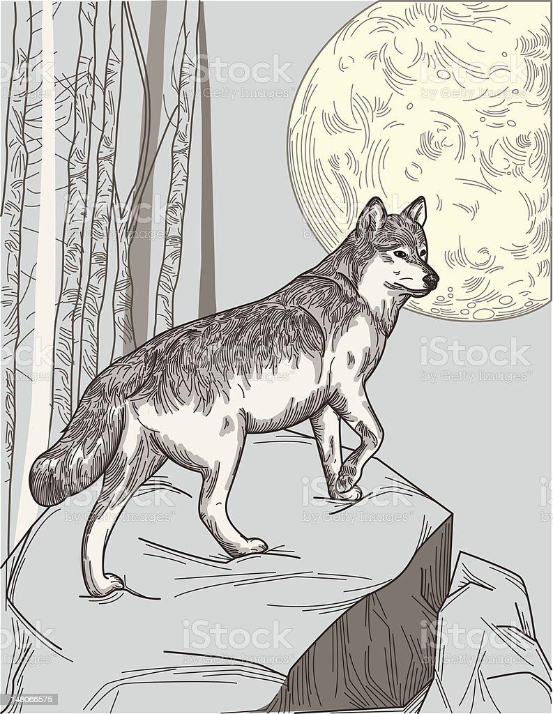 One Wolf Moon vector art illustration