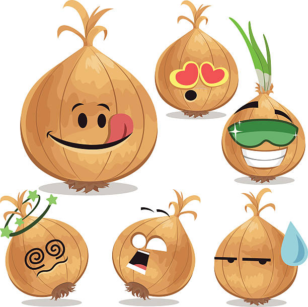 Best Onion Illustrations, Royalty-Free Vector Graphics ...