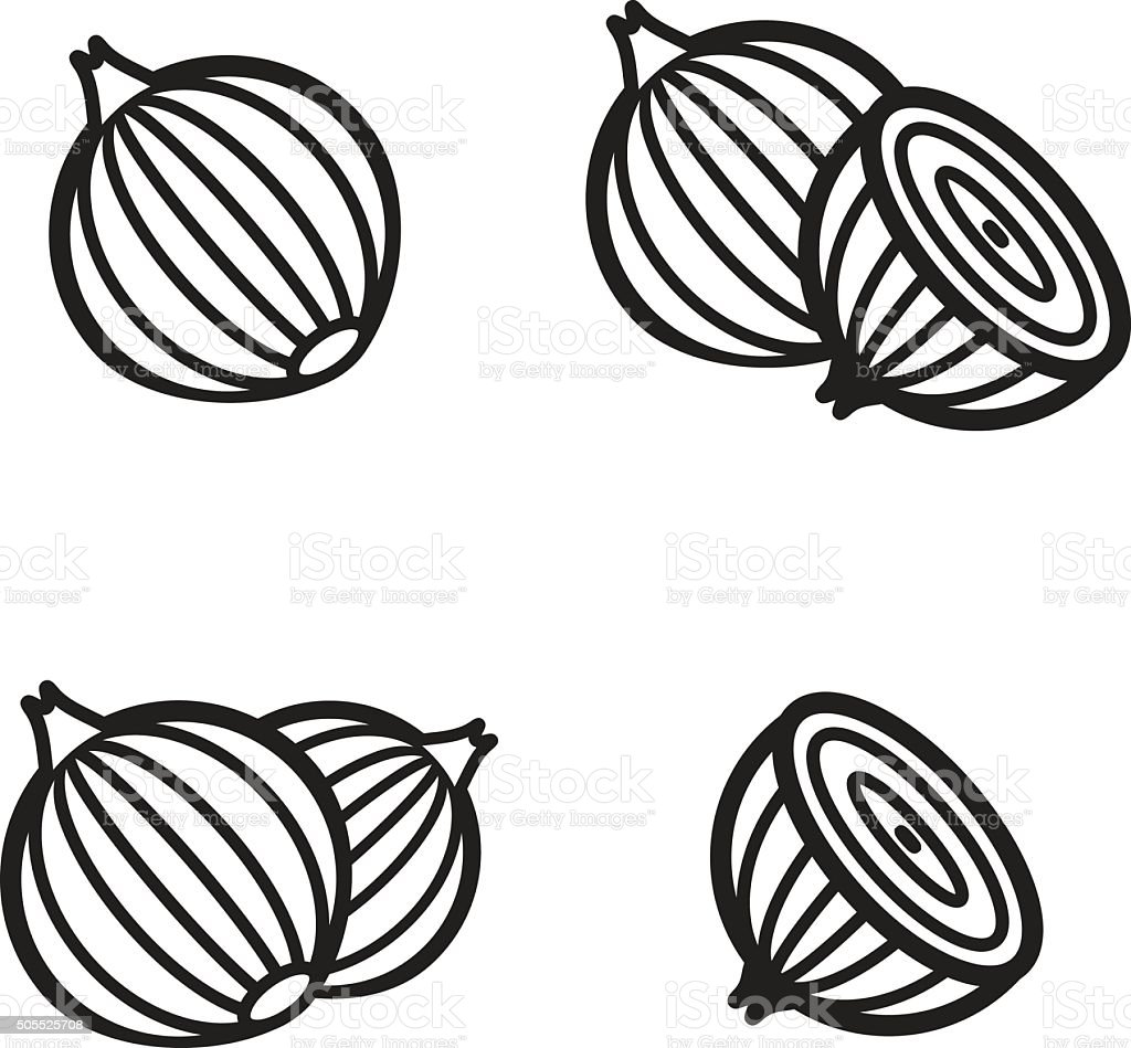 Onion icon in four variations. Vector illustration eps 10. vector art illustration