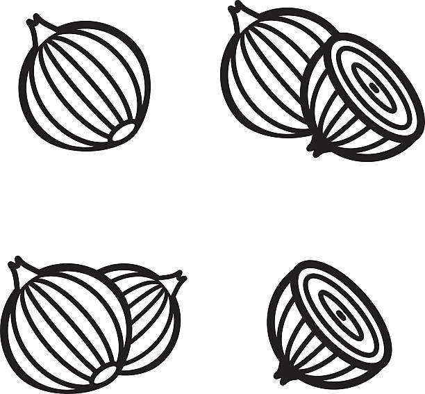 onion icon in four variations. vector illustration eps 10. - onion stock illustrations