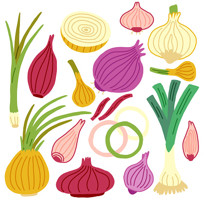 Onion set