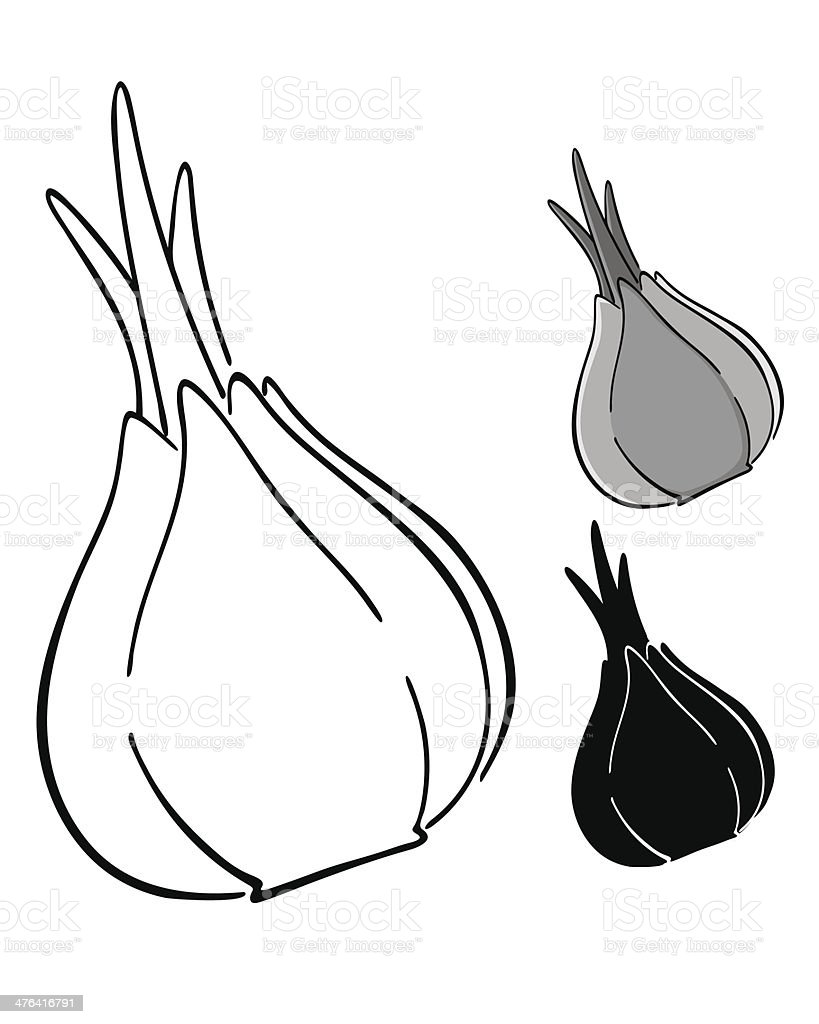 Onion silhouette royalty-free stock vector art