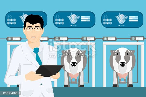 Online technologies of the process of obtaining milk from the udder of lactating farm animals, cows. Modern technologies in animal husbandry. Vector