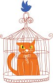 Angry cat in the birdcage.