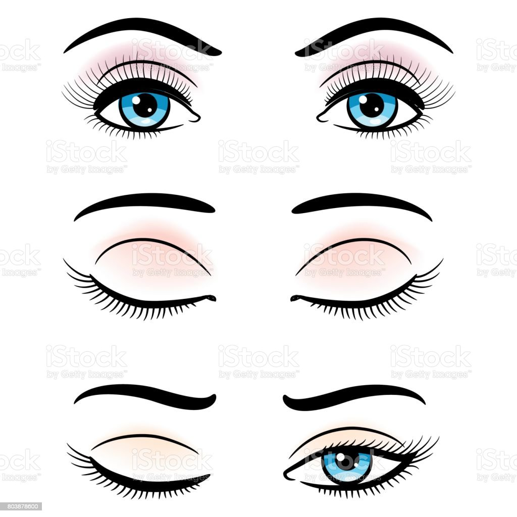 Open and closed blue female eyes vector art illustration