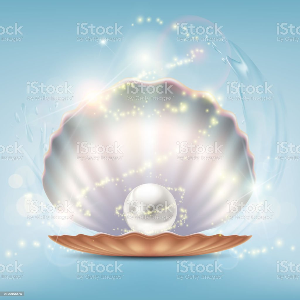 Open beautiful shell with a precious pearl vector art illustration