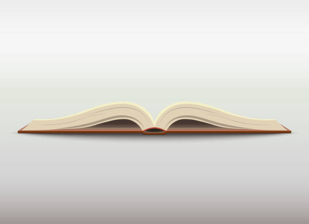 Open book. vector Opened book with blank pages. School education illustration. Vector encyclopaedia stock illustrations