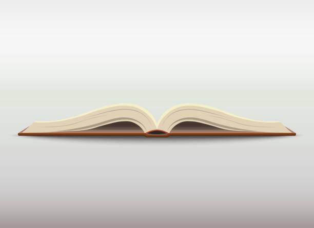 Open book. vector vector art illustration
