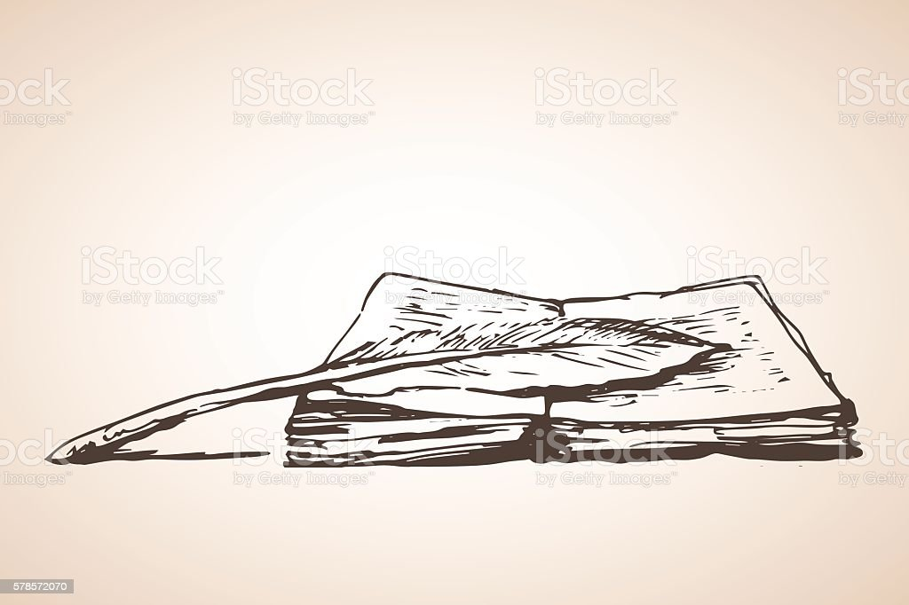 Line Art Feather : Open book with feather pen stock vector art more images of black