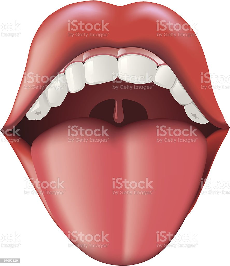 Open mouth showing teeth, tongue, and uvula vector art illustration