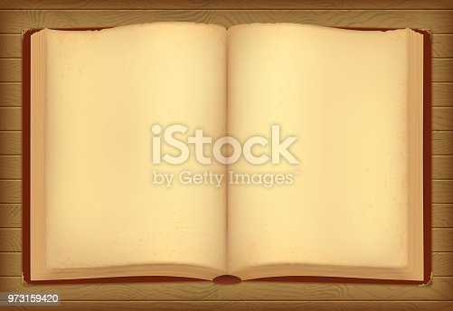 istock Opened aged book with decorative elements. 973159420