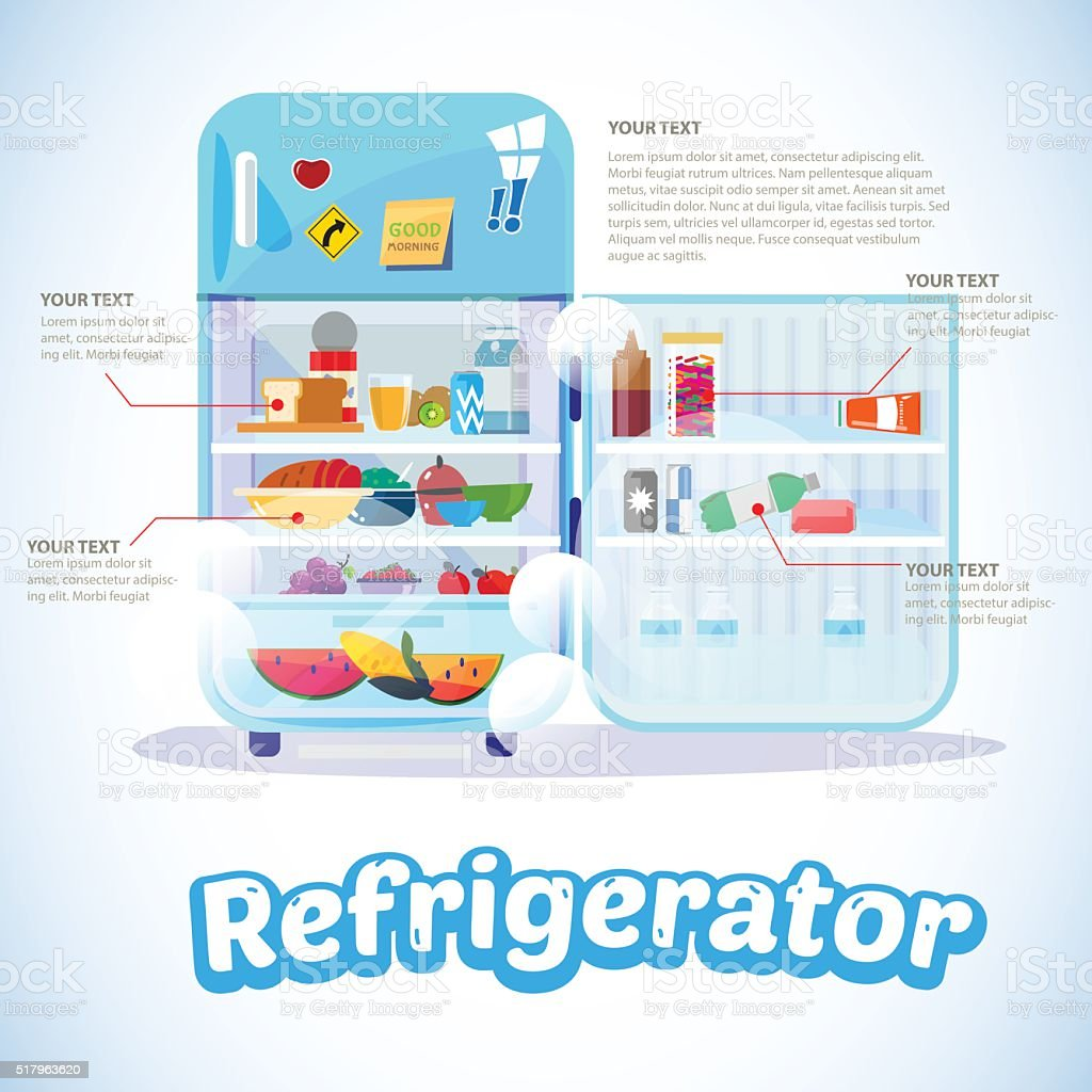 Opened Refrigerator with Full Of Food. infographic - Vector vector art illustration