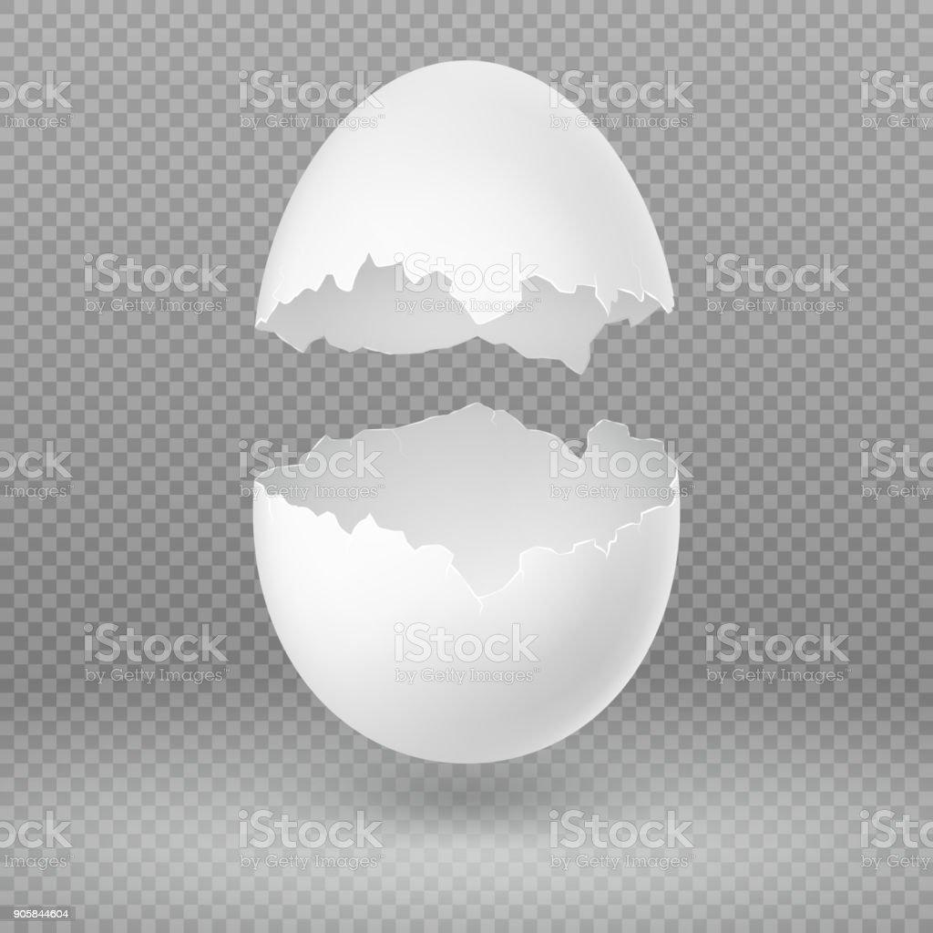 Opened white egg with broken shell isolated vector illustration