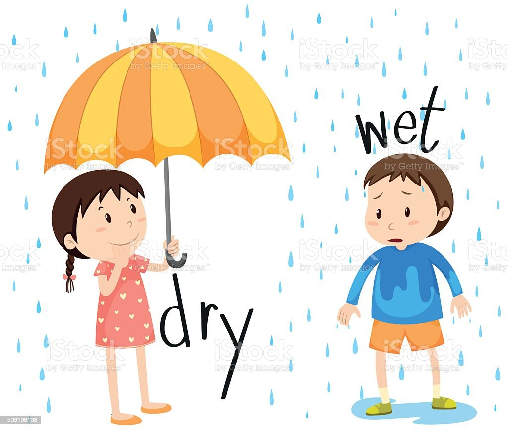 Opposite adjective dry and wet vector art illustration