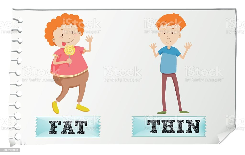 Opposite adjectives fat and thin vector art illustration
